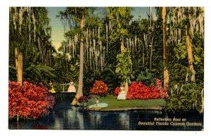 FL - Cypress Gardens. Reflection Pool