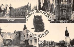 Winchester Good Luck! Cathedral Great Screen Cheyney Court Entrance Statue Cat