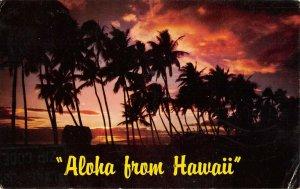 MIN0598 hawaii aloha from hawaii palmtrees sunset