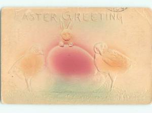 Divided-Back EASTER BUNNY RABBIT SCENE Cute Postcard AA1148