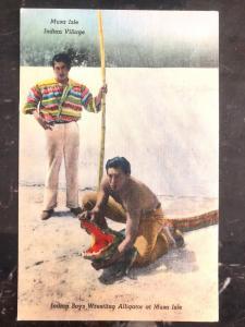 Mint USA PPC Picture Postcard Native American Seminole Indian Wrestling Alligato