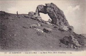 Sheep, La Pierre Percee (Molte d'Aveillans), Le Dauphine, France, 1900-1910s