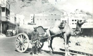 Yemen Aden water seller crater camel traction ethnic life real photo postcard