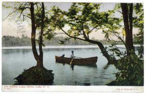 North White Lake to Brooklyn, New York 1908 used Postcard, Amber Lake
