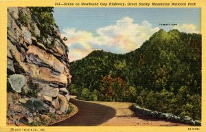 TN - Great Smoky Mountains National Park. Newfound Gap Highway Scene