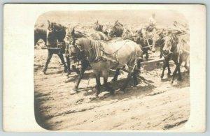 Farm Real Photo Postcard~Close Up 10 Horse Drawn Plow~2 Teams~c1905 RPPC