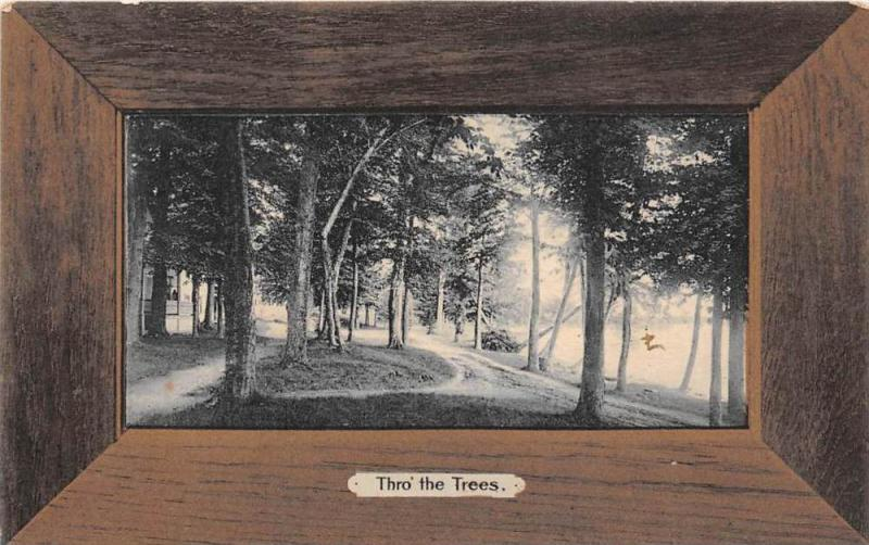 17012     Wood Frame Picture card   Tho  the Trees