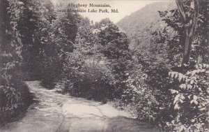 Maryland Mountain Lake Park Allegheny Mountains Albertype