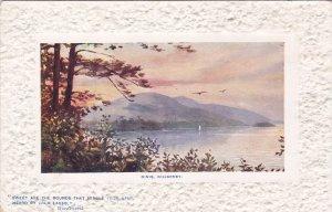 TUCK 9745, Dinis, Killarney Lakes, Ireland, 1900-10s #2