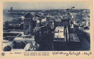 RABAT (Maroc), Morocco, 10-30s; Storks flying at the Oudayas