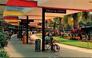 Florida Silver Springs Covered Promenade