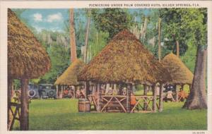 Florida Silver Springs Picnicking Under Palm Covered Huts 1936 Curteich