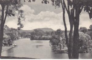 Paradise Pond Smith College Northampton Massachusetts Albertype