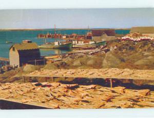 Pre-1980 TOWN VIEW SCENE Cape Sable Island Nova Scotia NS p9665