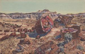 Petrified Log, PETRIFIED FOREST NATIONAL PARK, Arizona, PU-1947