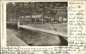 Killingly CT Wildwood Park c1905 Postcard