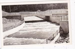 Oregon Fish Ladder Bonneville Dam  Columbia River Highway Real Photo