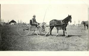 c1910 RPPC Horse & Buggy, Mare with Young Foal, Idaho Prairie Farm?