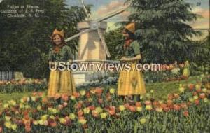Gardens of J. B. Ivey Charlotte NC Unused
