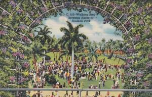 Florida Miami Hialeah Park Walking Ring Between Races Curteich