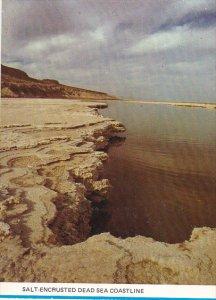 Israel Salt Encrusted Dead Sea Coastline