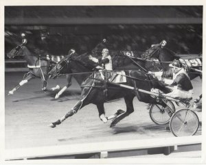 ROOSEVELT Raceway, Harness Horse Race, MONA BLUE CHIP winner