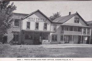 New York Cooks Falls Geo I Treyz General Store & Post Office sk0237a