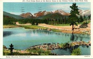Colorado Estes Park Trail Ridge Road At The Beaver Dams In The Hidden Valley ...