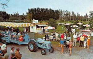 Palm Beach Florida Knollwood Groves Fairground Vintage Postcard K81661