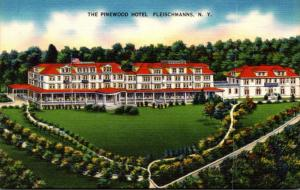 New York Fleischmanns The Pinewood Hotel