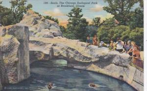 Illinois Chicago Zoological Park At Brookfield The Seals 1943 Curteich