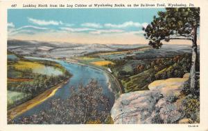 Wyalusing Pennsylvania~Wyalusing Rocks & Sullivan Trail Looking North~1940s PC