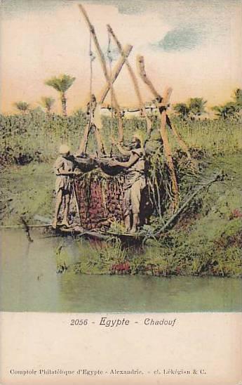 Irrigation; Chadouf , Egypt , 00-10s #2