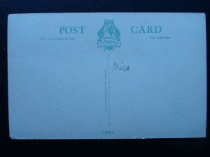 West Midlands DUDLEY Castle Entrance - Old Postcard by E.T.W. Dennis