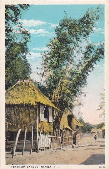 Philippines Manila Native Huts and Feathery Bamboo Curteich