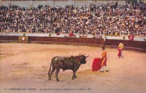 Bull Fight Corrida de Toros Torrador Bull Fighter JLa derniere suerte Appel a...