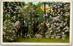 Vintage Virginia Postcard Horse-Back Riders, Blue Ridge Mountains 1930s Unused