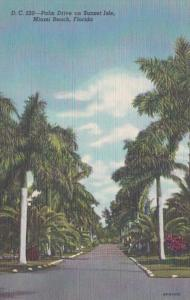 Florida Miami Beach Palm Drive On Sunset Isle 1948 Curteich