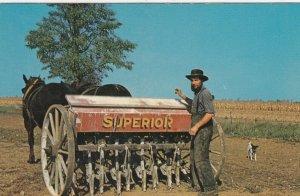 Amish Farmer , 1950-60s