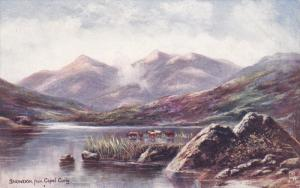 TUCK #1724 , North Wales Series III, 00-10s : SNOWDON from Capel Curig
