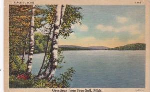 Michigan Greetings From Free Soil 1941 Curteich