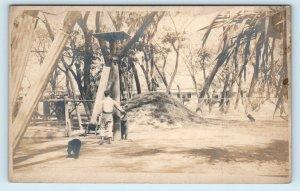 RPPC ZOO Scene?  TRAINER with BEARS c1910s Velox Back Mystery Location  Postcard