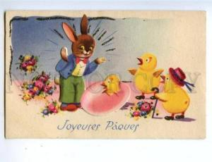 157790 EASTER Dressed RABBIT Chickens EGG vintage colorful PC