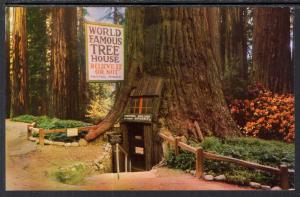 World Famous Tree House,Tree House Park,Redwood Highway,CA