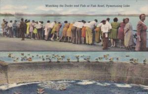 Pennsylvania Pymatuning Lake Watching The DUcks and Fish At The Fish Bowl 194...