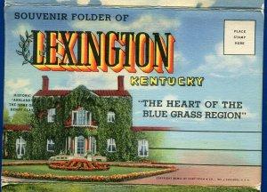 Lexington Kentucky ky Blue Grass Region thoroughbreds horses postcard folder