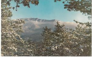 Mount Le Conte as seen from Mount Harrison, Gatlinburg, Tennessee, Postcard