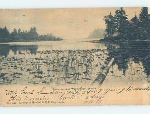 Pre-1907 LAKE SCENE Seattle Washington WA A1051