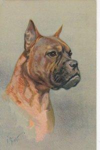 AS: Boxer Dog , 1920-30s