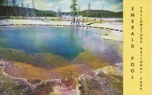 Yellowstone National Park Emerald Pool